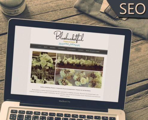 onewebx bluebucketful seo online marketing google page rank 1 india outsource bing
