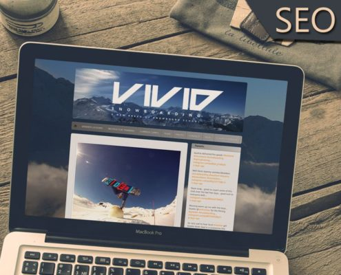 onewebx vivid snowboarding seo online marketing google page rank usa us uk texas
